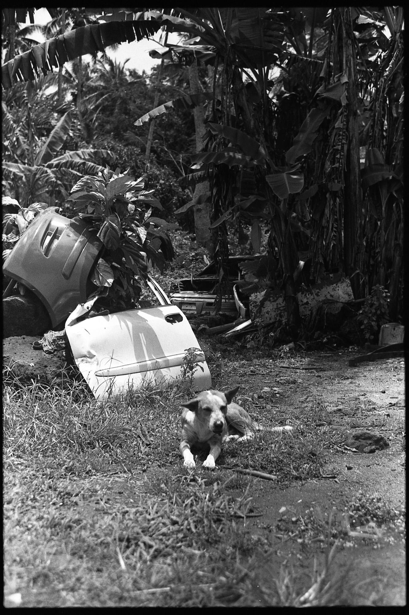 Samoa_RVCA_Tmax400_04_02.JPG