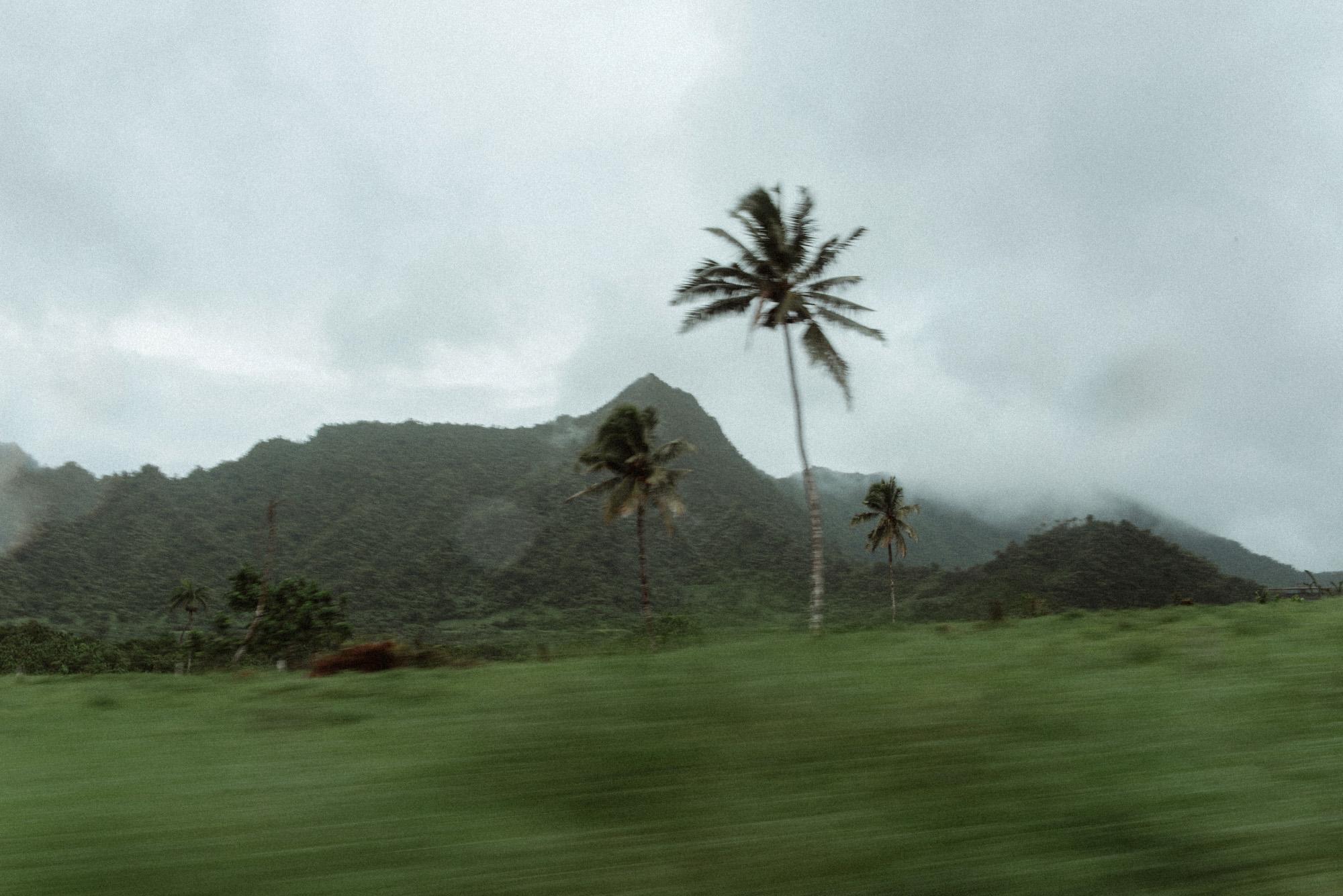 Samoa_Oct2018_RVCA_21-10-18_112.JPG