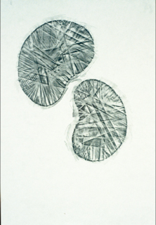 Drawings documenting sculptural pieces