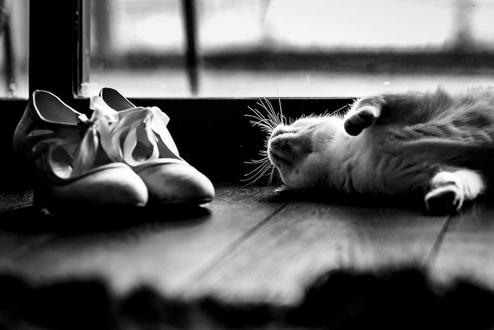 Jess+AndyWedding-1.jpg