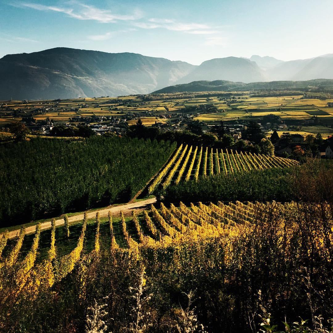 Alto Adige  -