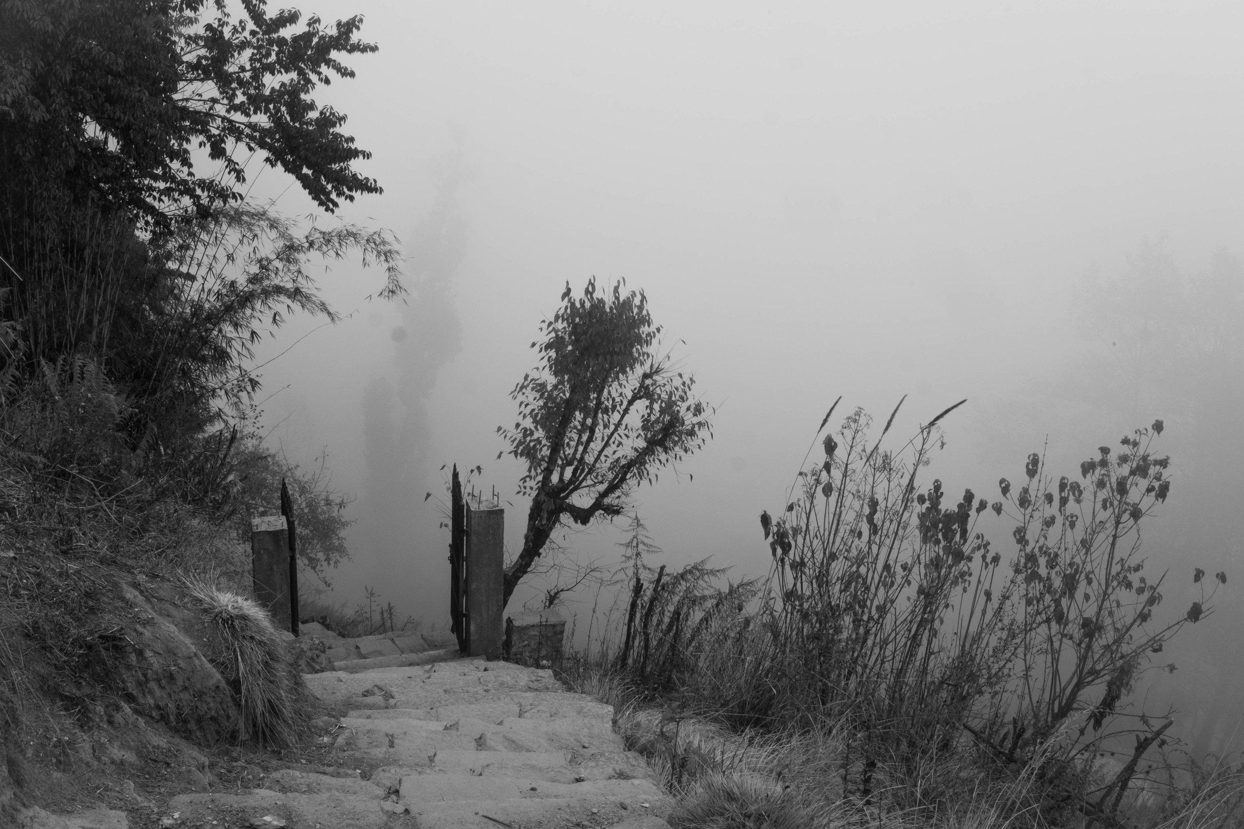 fog III