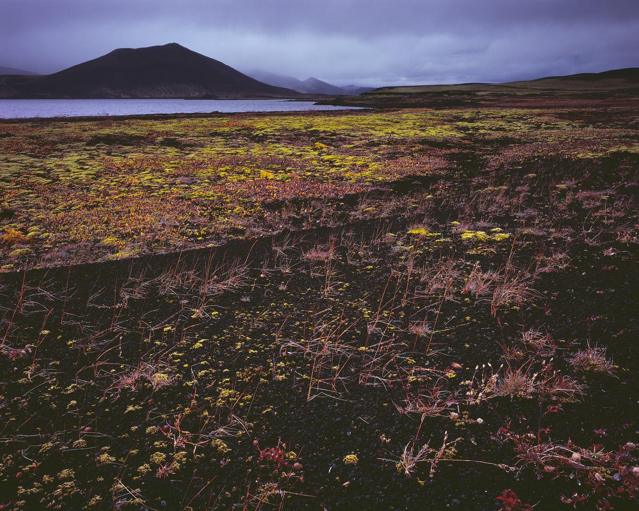 Einer der vielen Teiche der Veiðivötn.