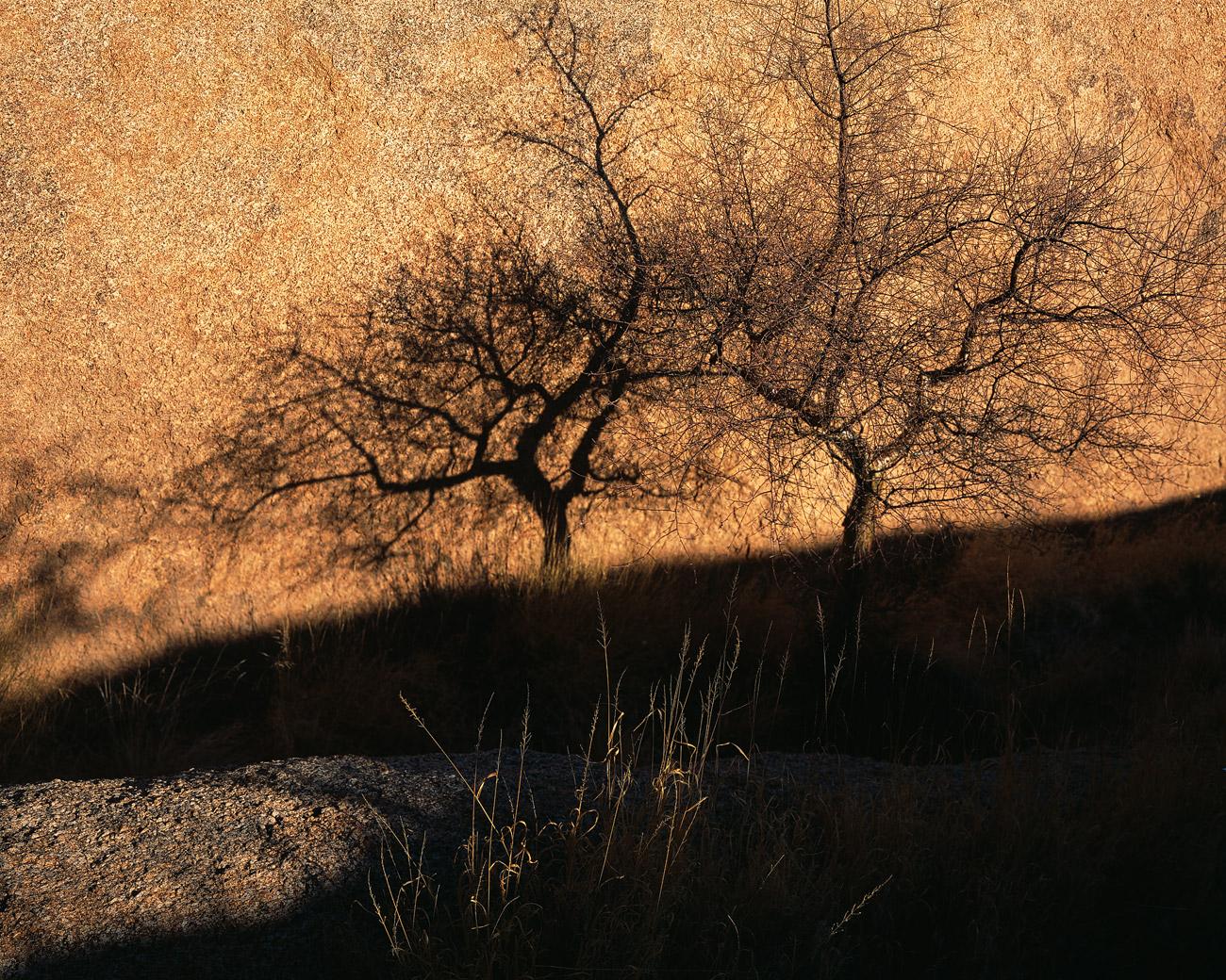 Bei Spitzkoppe, Namibia.