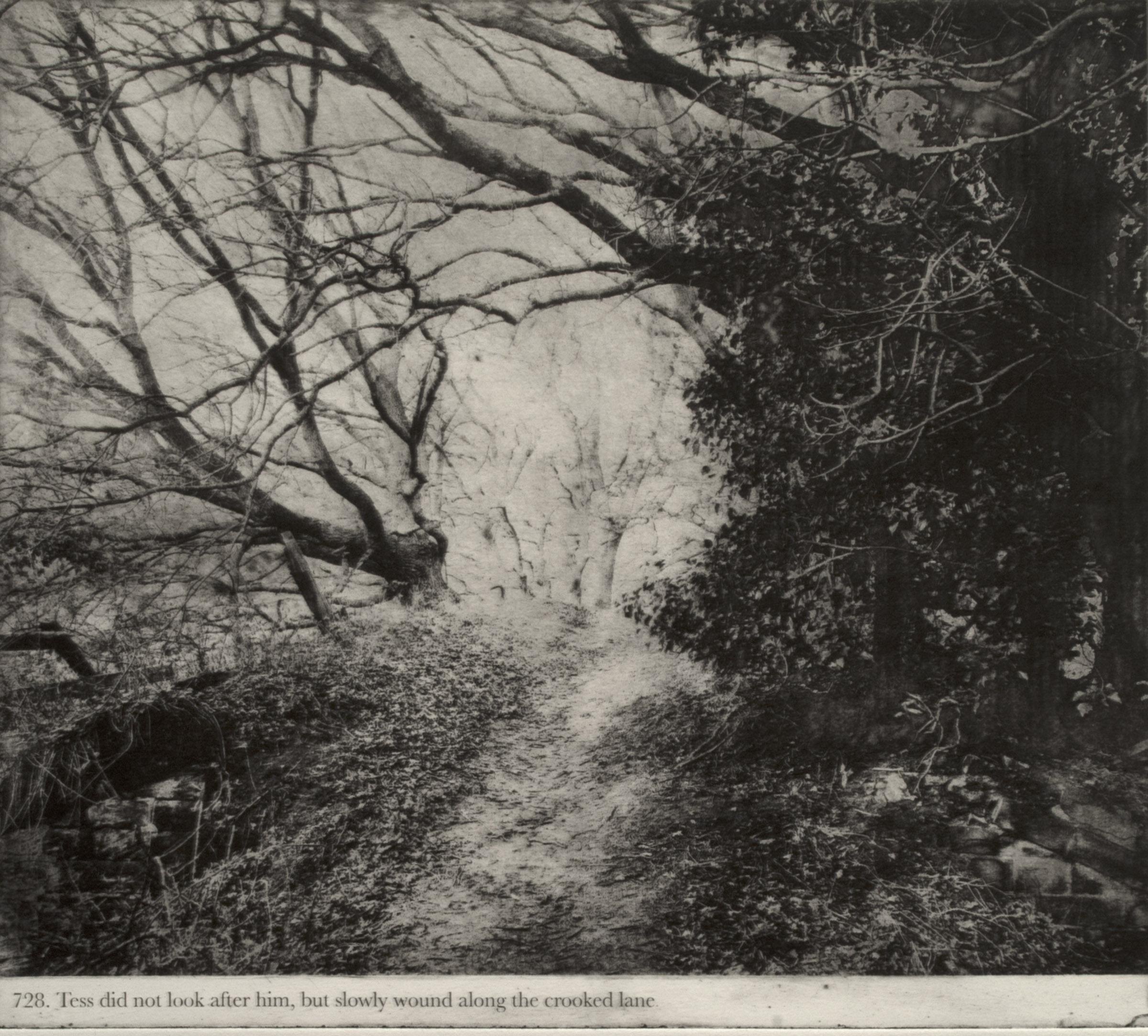 'Thus Tess walked on', Jackie Chettur