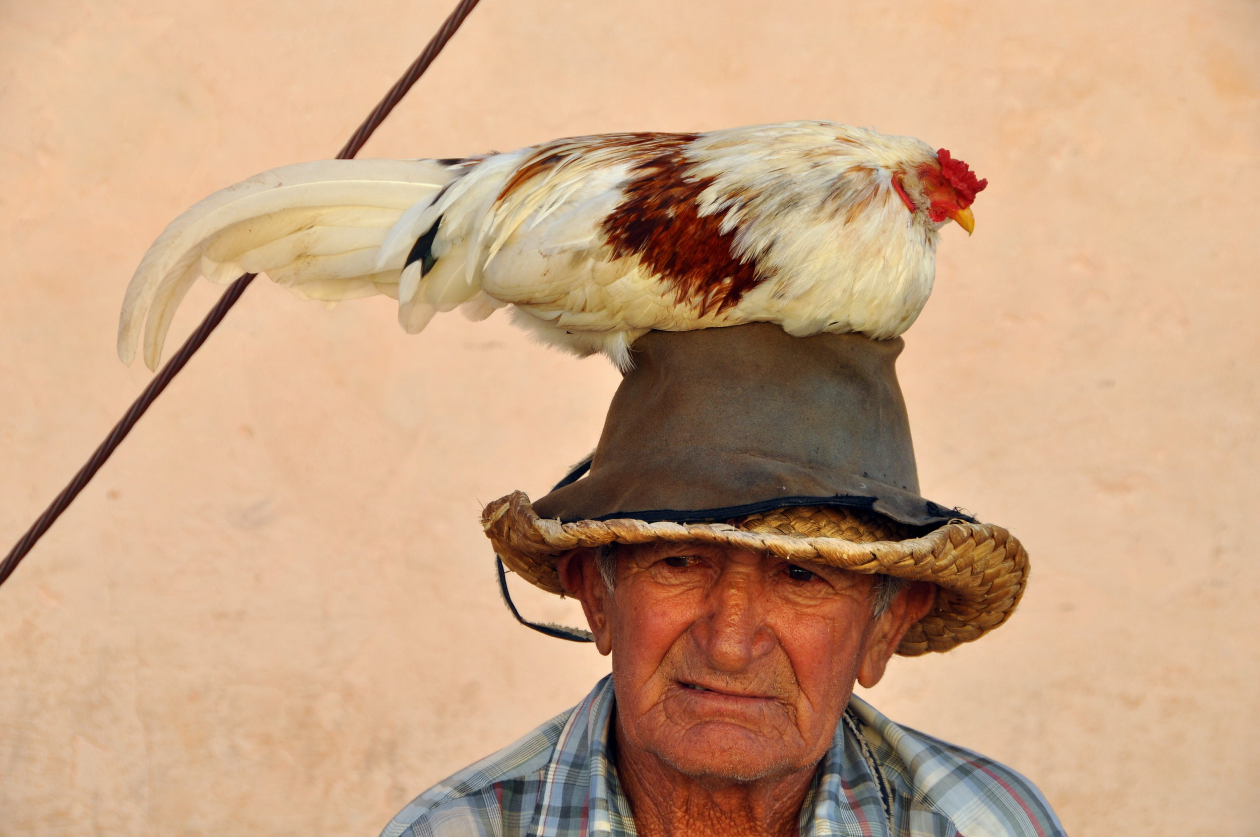 Old man w a rooster.jpg