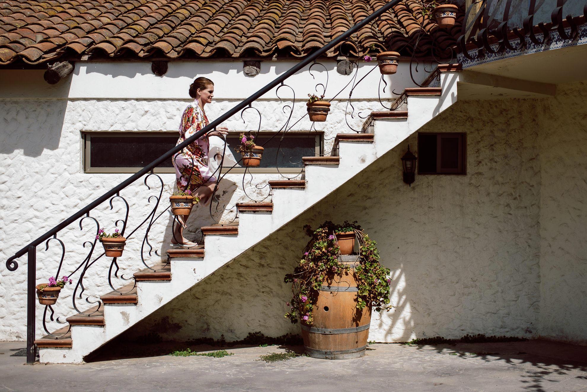 viña casas del bosque_011.jpg