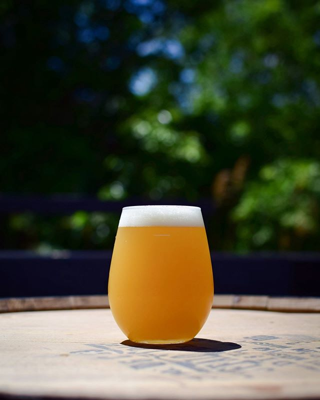 Available Today. 6.8  Vortex is our brand spanking new, single IPA. Clocking in at 6.5% abv., for all the day drinking to come, in the months ahead. We took pils, red wheat and outrageous amount of flaked oats, to create a super soft, luscious, almost creamy body. We then dry-hopped it with a mix of Mosaic, Mandarina Bavaria, Huell Melon, Santiam and Ella. This beer is packed with aromas of melon, cantaloupe, blueberry, and is ever so juicy.  This is a draft only release, so if you want to bring this bad boy home with you, please bring your CLEAN Mystic or unbranded growler.