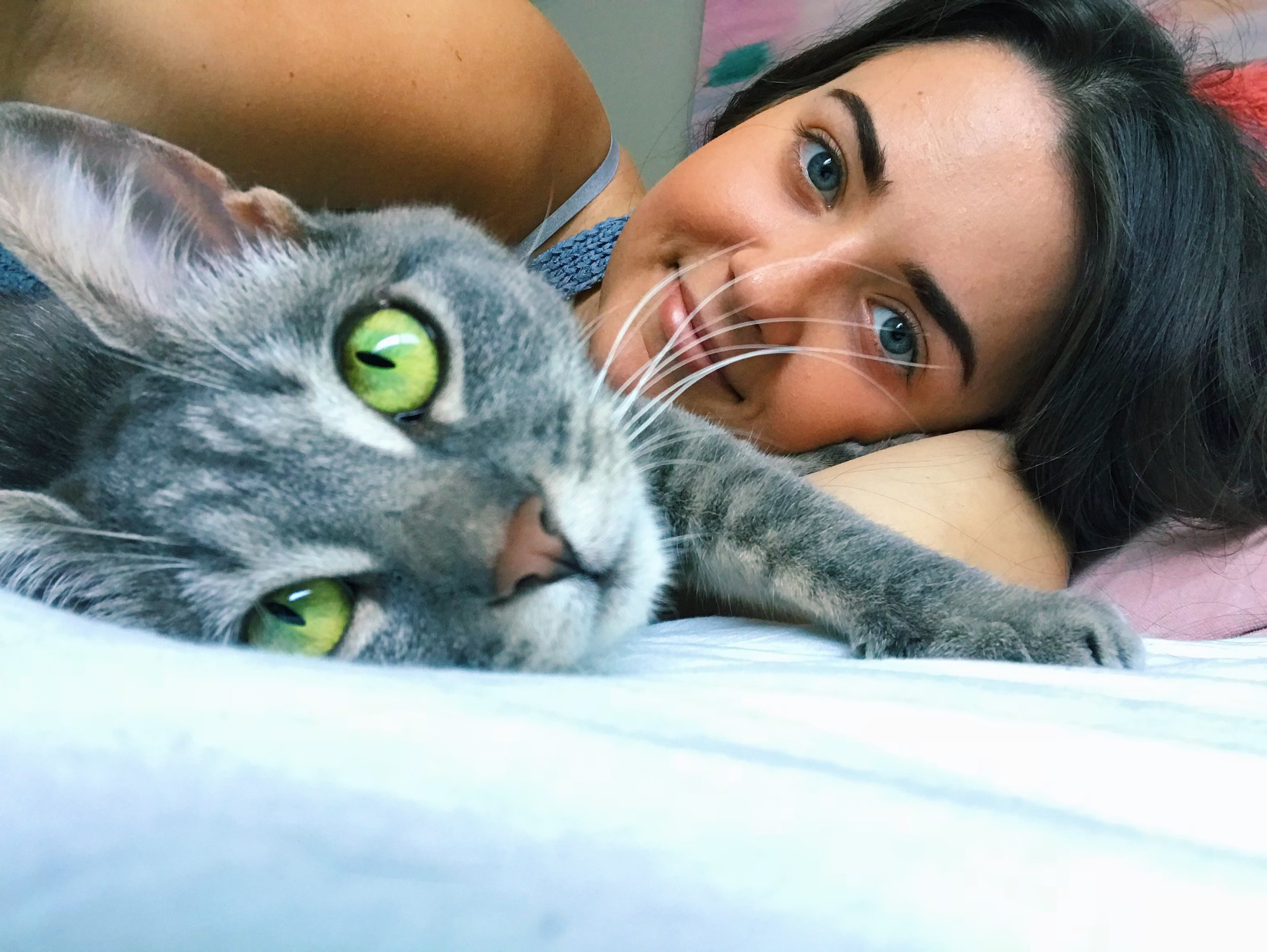 Daisy   6/20/19   Last Thursday on June 13th, I entered into my first serious and committed relationship.  I adopted a cat.  Her name is Daisy and I already love her more than words can express (yes we're moving pretty fast but what can I say…when you know you know)...