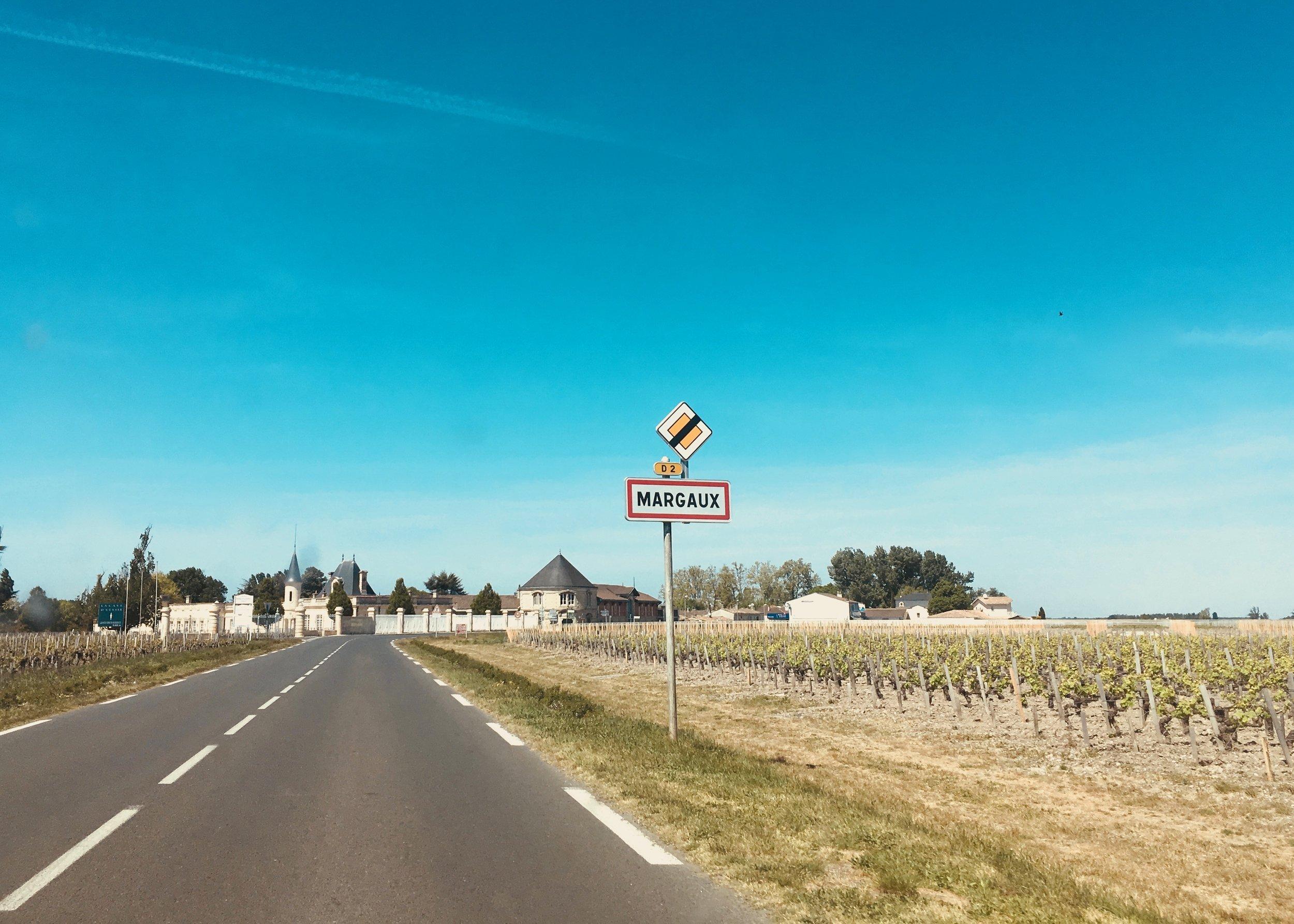 margaux route des chateaux wine tour vineyards sanctuary surf holiday.jpg