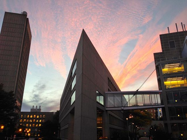 Massachusetts Institute of Technology (MIT), Cambridge, MA. My office on left. #MIT #campus #sunset