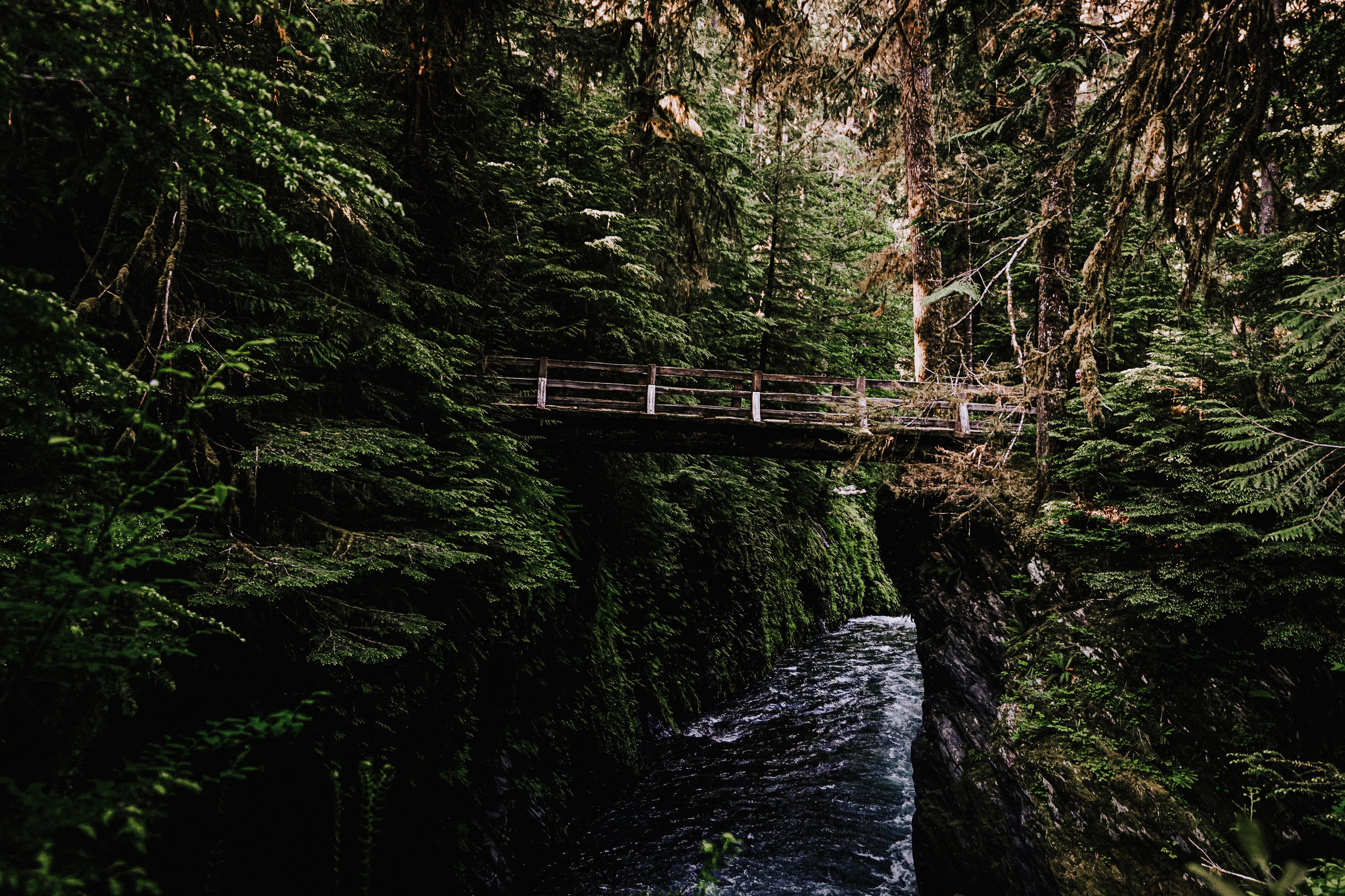 Enchanted Valley Olympic National Park