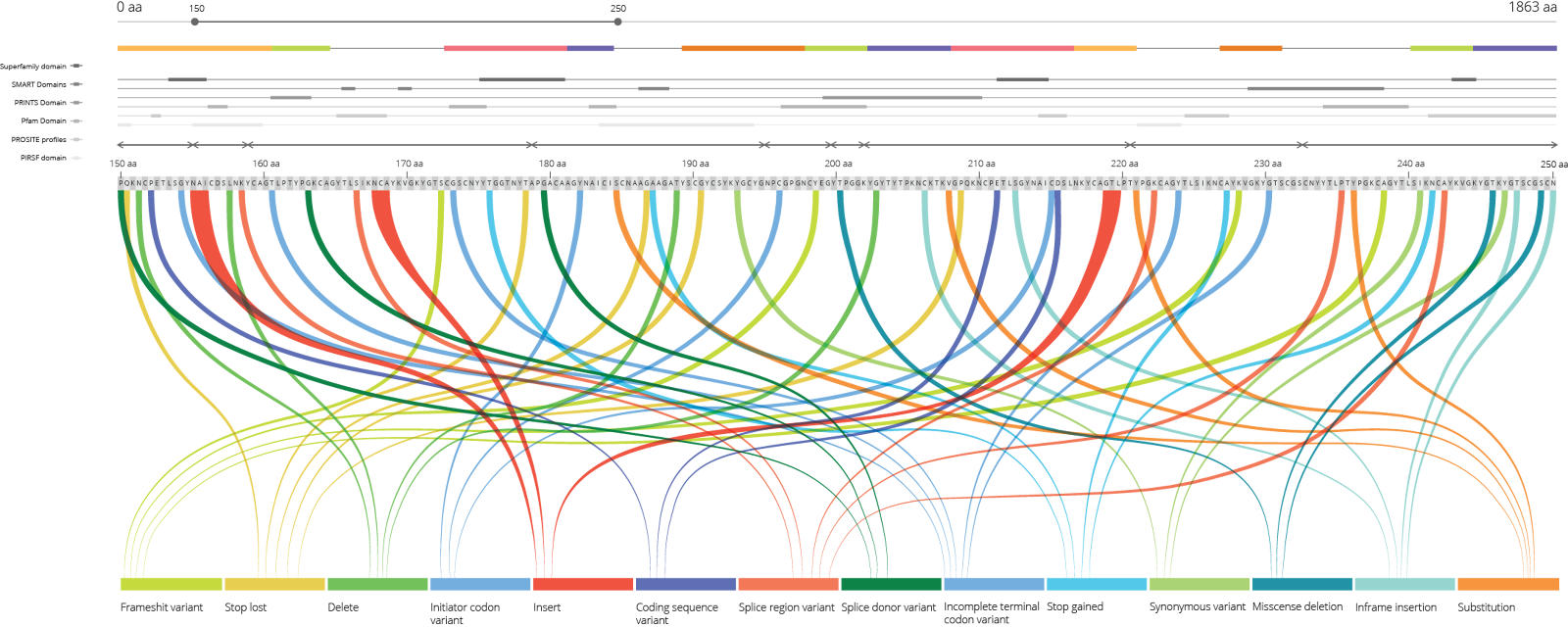 Illustrator static prototype with fake data