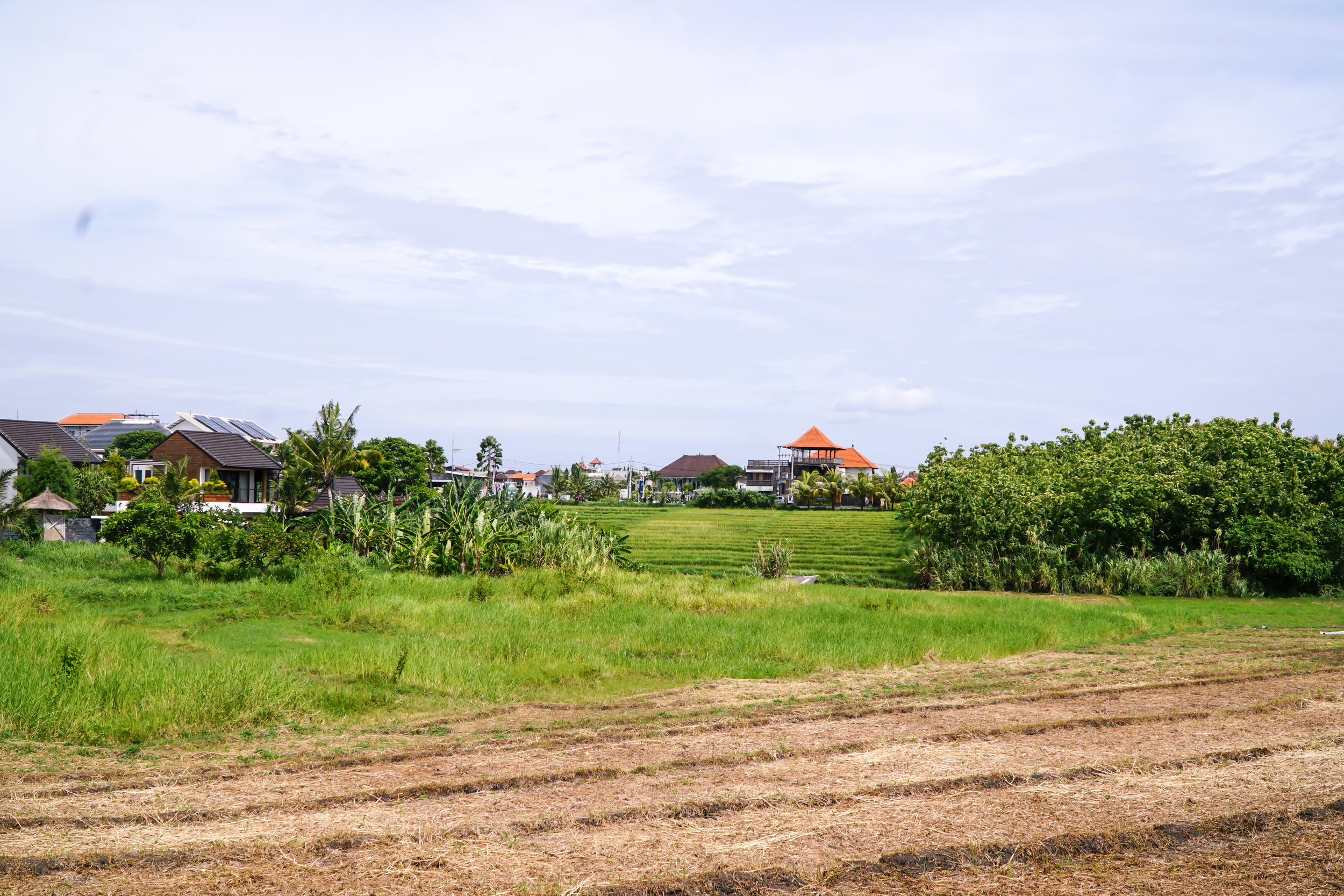 Happytrails.fi Bali Ubud Olkinuora-Valkonen