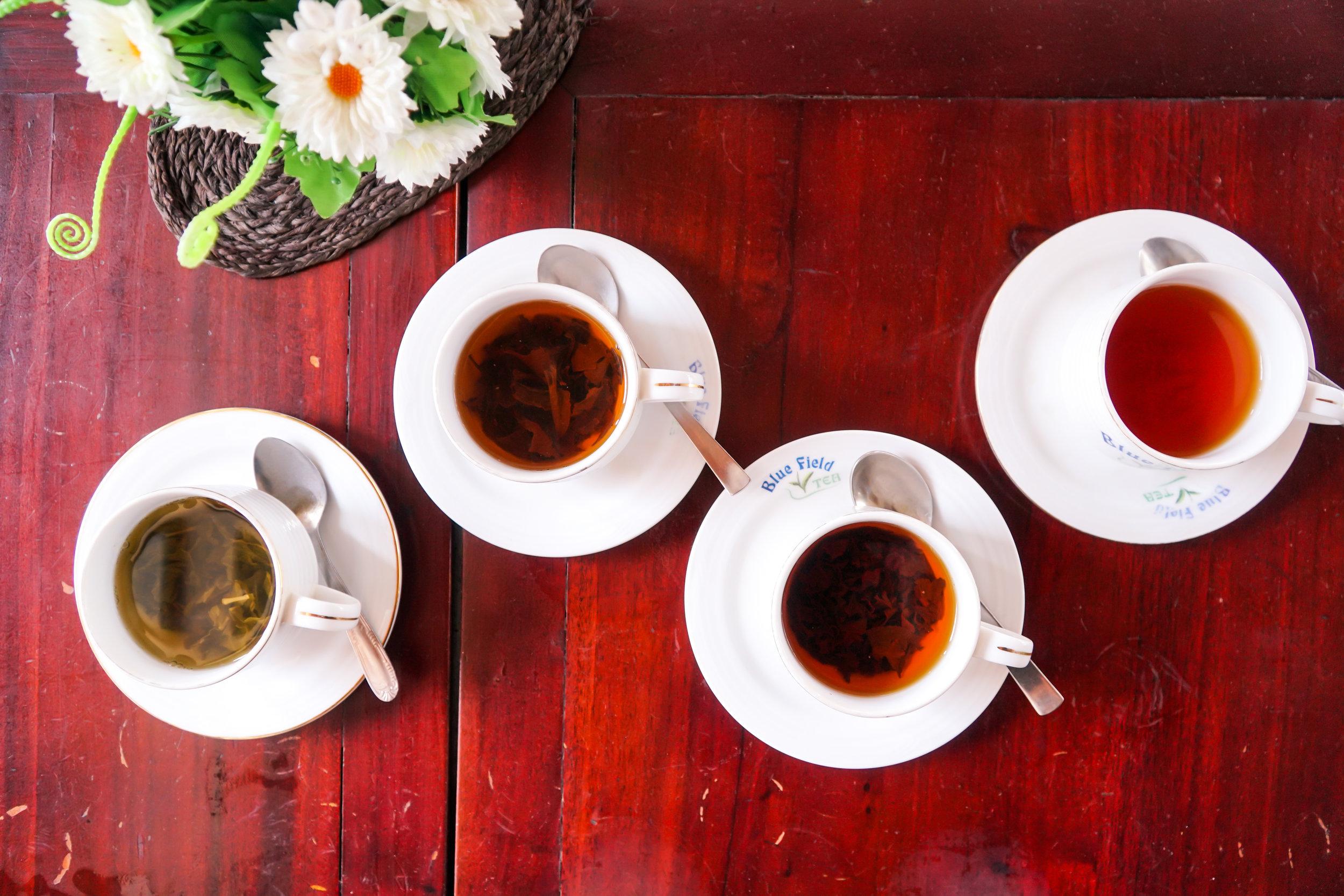 Teemaistelussa. Vasemmalta lähtee Green Tea, OP, Pekoe ja oikeassa reunassa BOP.