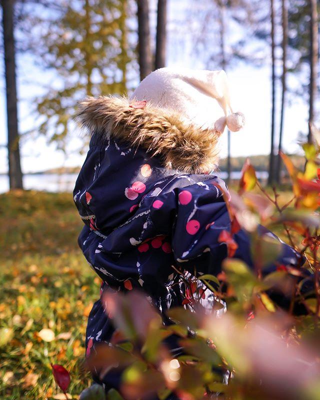Syysloma ja mökillä lastenvahtina. Kolme isompaa juoksee edellä ja yksi pienempi perässä.  Näin luonnossa pitää olla vermeet kunnossa. Olin ostanut viime keväänä jemmaan alennuksesta haalarin, joka osoittautuikin nyt syksyllä valtavaksi. Ei muuta kun haalarikauppaan, kotimaista ja kestävää. Löysin maailman kauneimman @reimafinland'in Oulu-haalarin ❤️ Aamulla oli jo pakkasta, joten nyt saa pukea jo talvivaatteet 😍