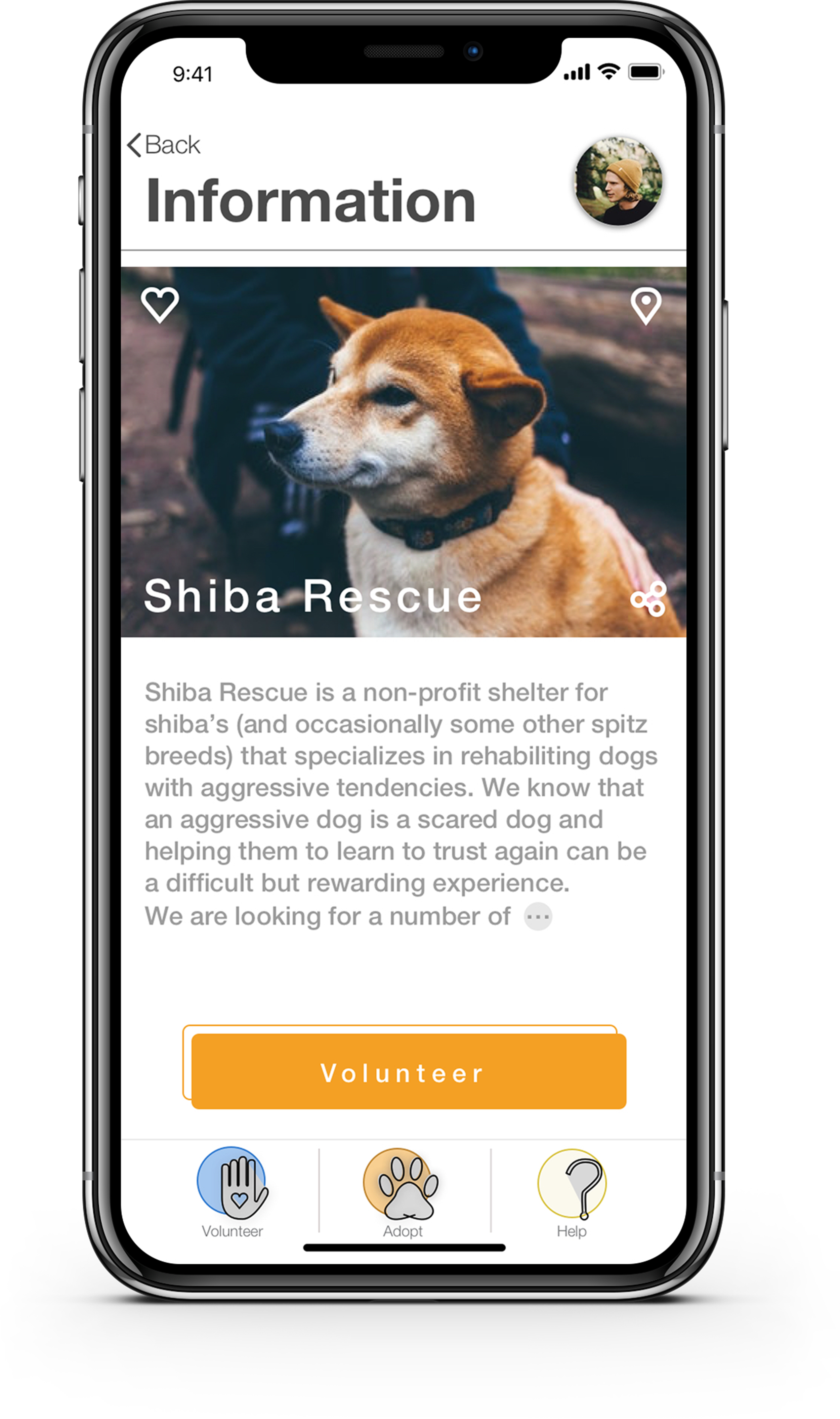 A  page describing the shelter's cause is very important for the user.  You don't want to end up at a shelter specializing in aggressive dogs if you don't feel prepared for that, and you don't want to end up at a shelter of puppies if … wait, of course you want to end up at a shelter of puppies.