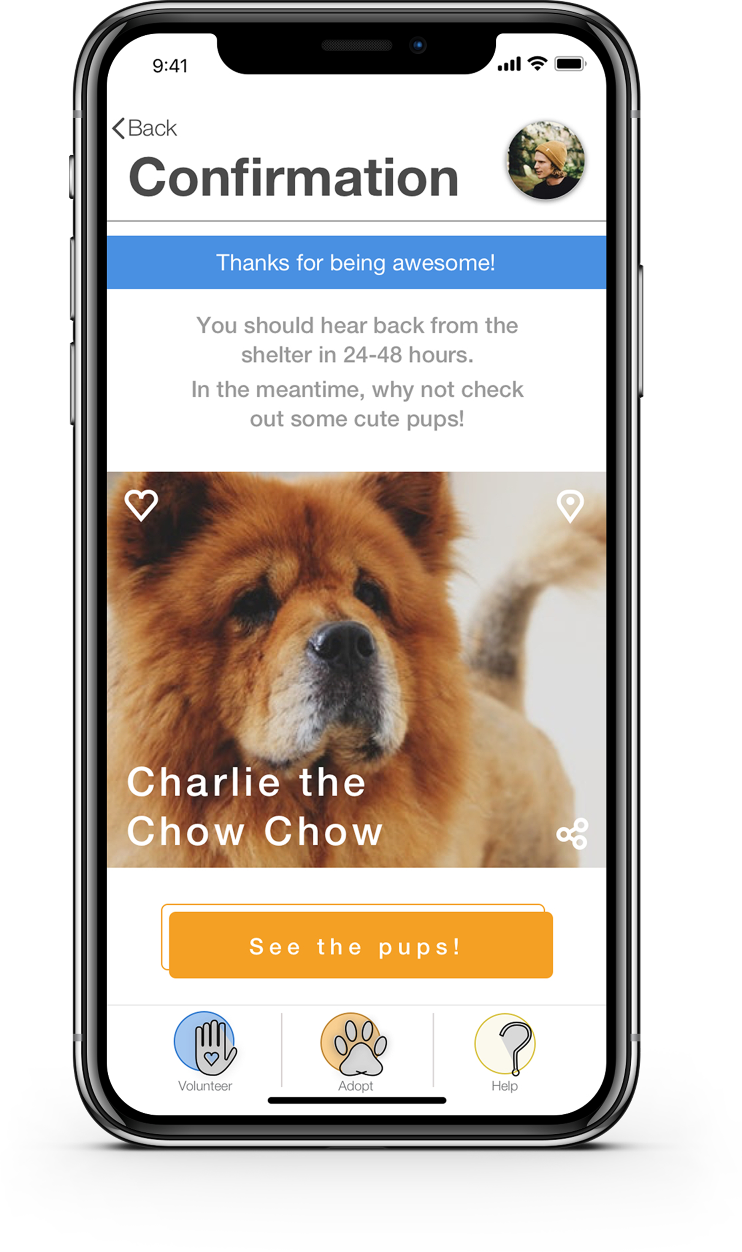 """Confirmation pages are a great chance to include a CTA . The user is probably feeling positive and a large """"See the pups!"""" has a great chance of getting clicked. This button would bring the user to the adoption page, hopefully resulting in more dogs with homes!"""