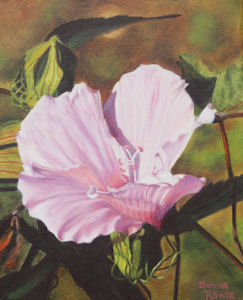 dr-lake-murray-hibiscus.jpg