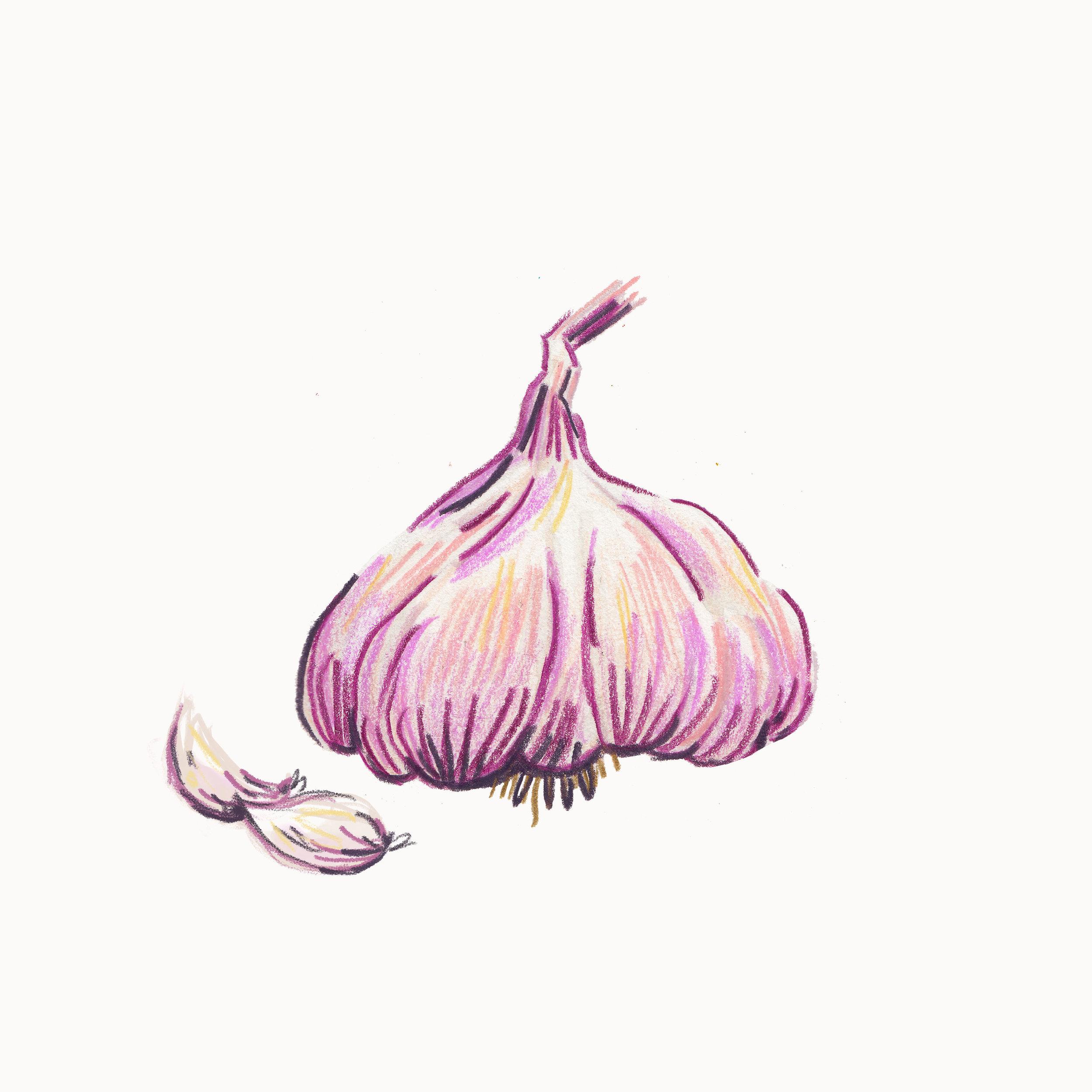 014-Garlic.jpg