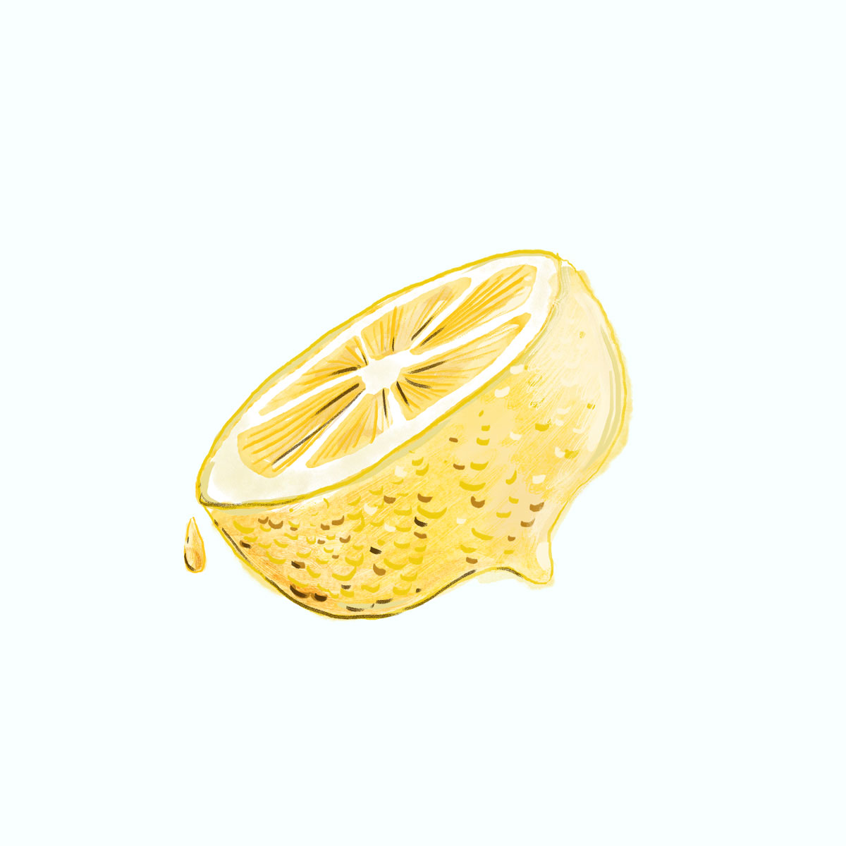 022-Lemon.jpg
