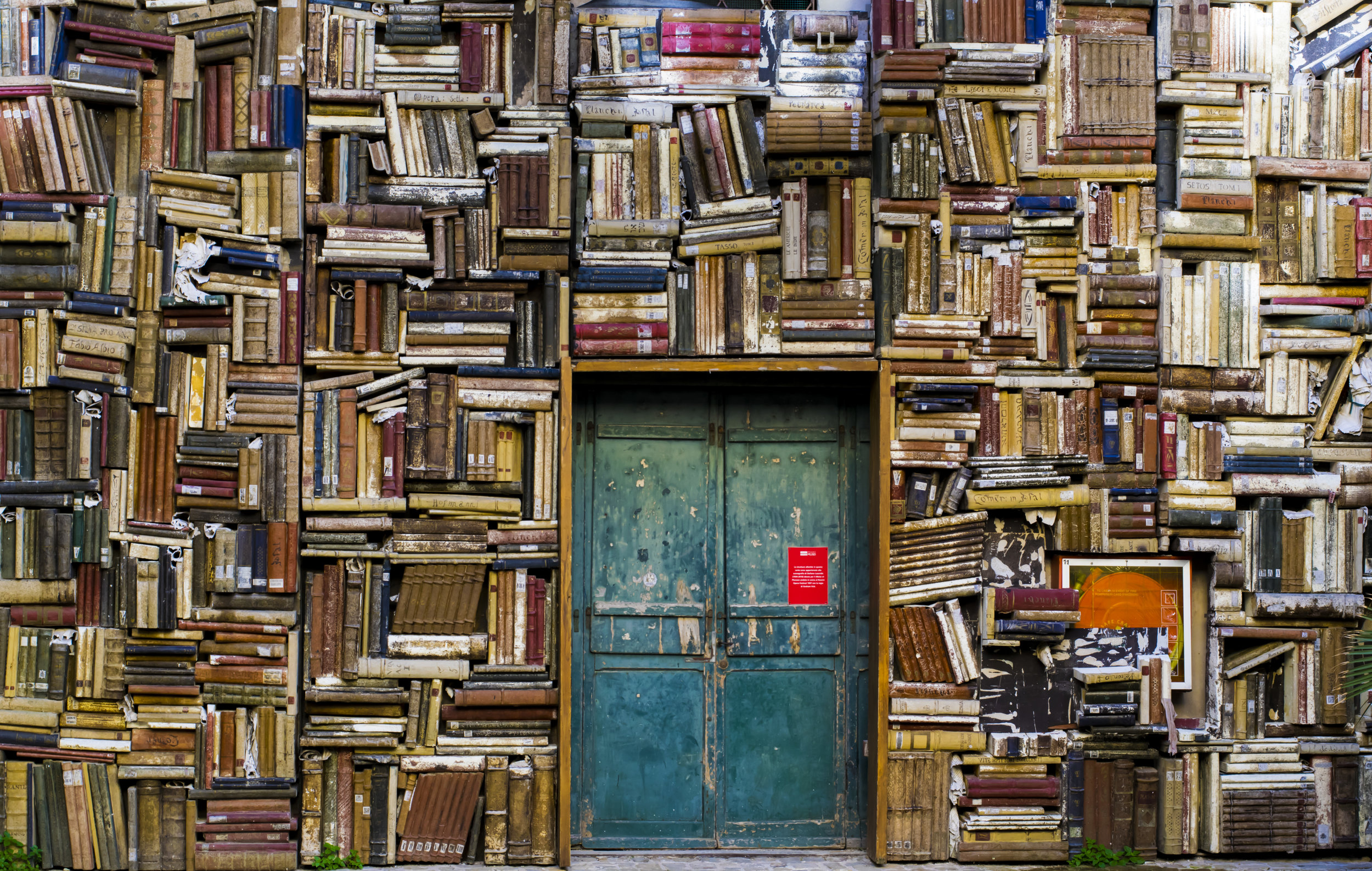 Find the right book to open the door! Easy!