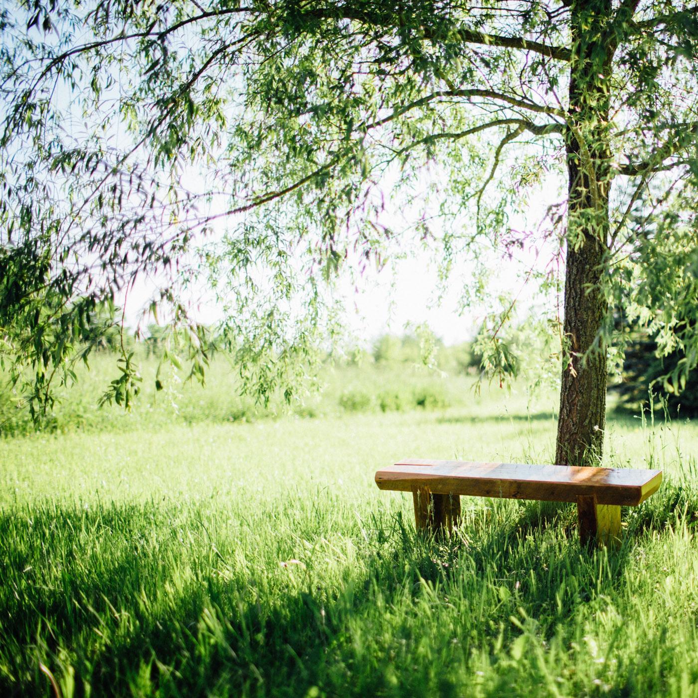 BeReclaimed - Reclaimed Wood Bench - Douglas Fir - Collingwood Ontario.jpg