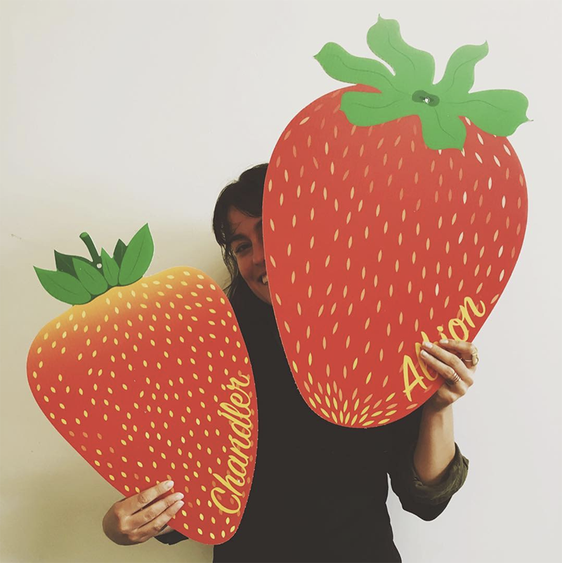 Illustrations   for Strawberry Sensation Window Cut-Outs