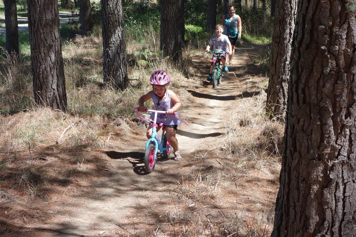 Kids in Pine trees.jpg