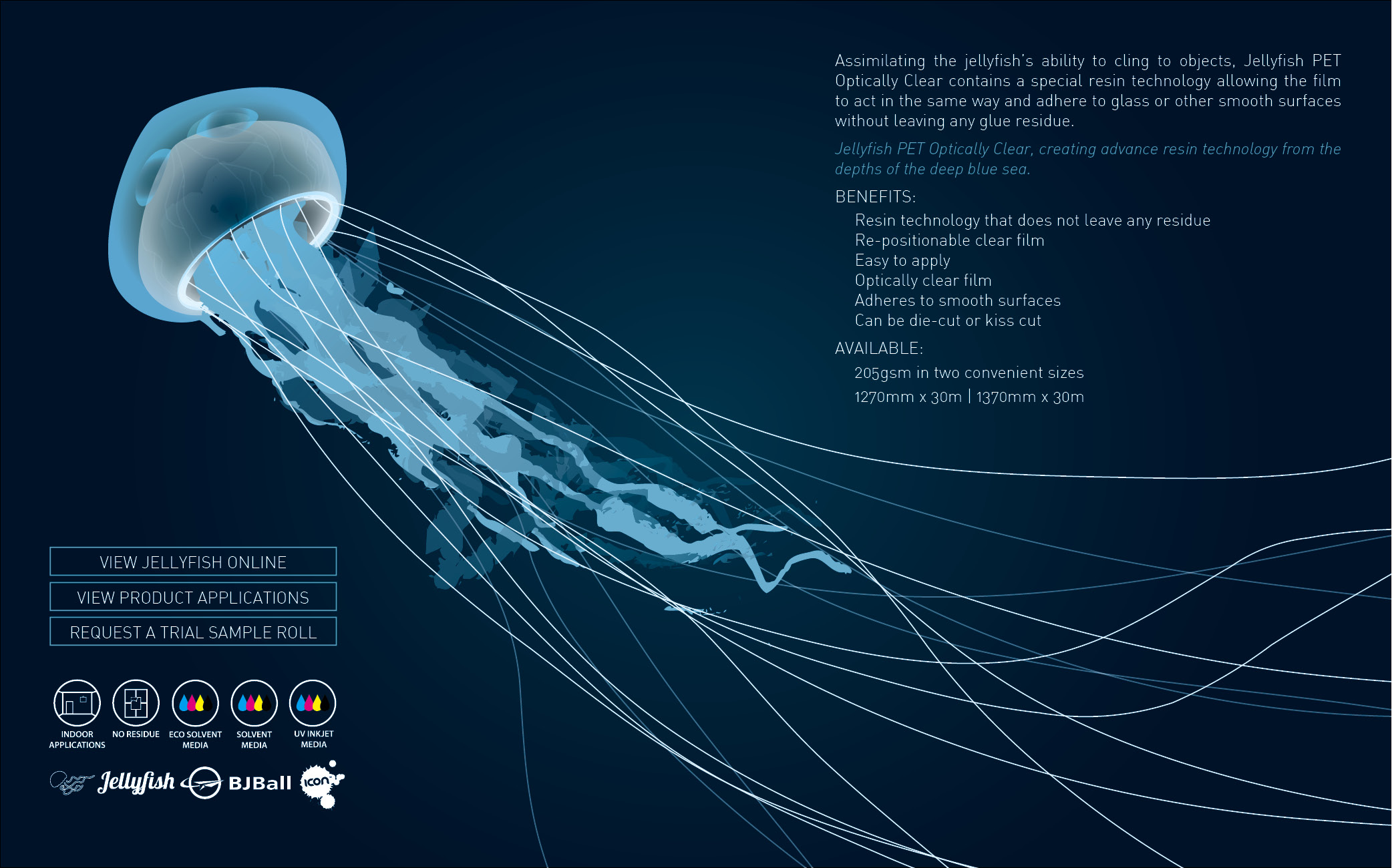 Email Marketing Campaign - Jelly fish