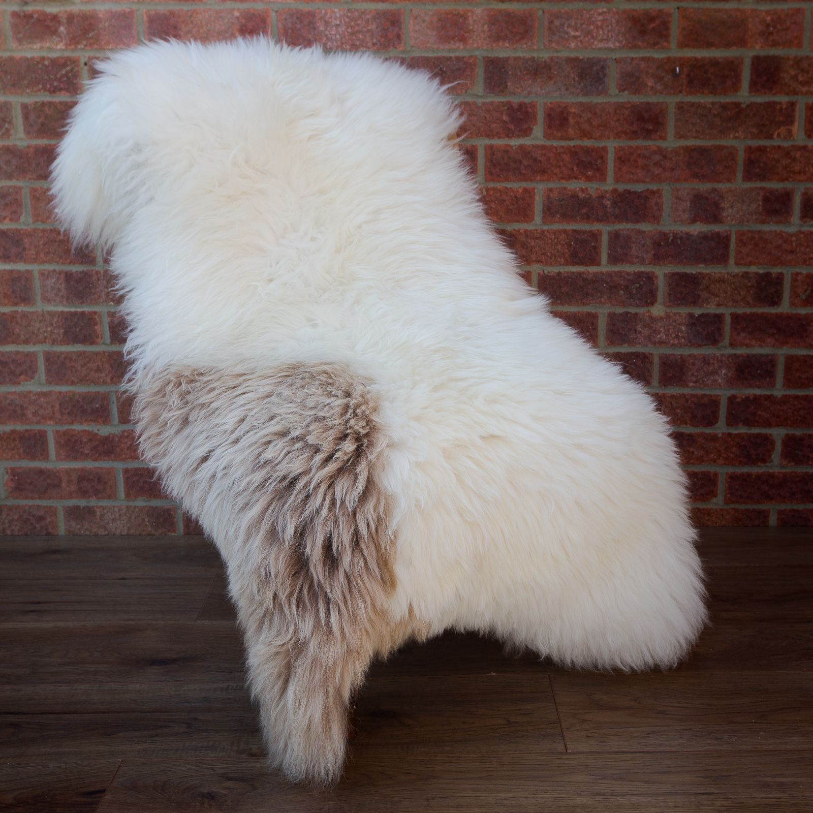 Extra large, cream with brown patch sheepskin rug