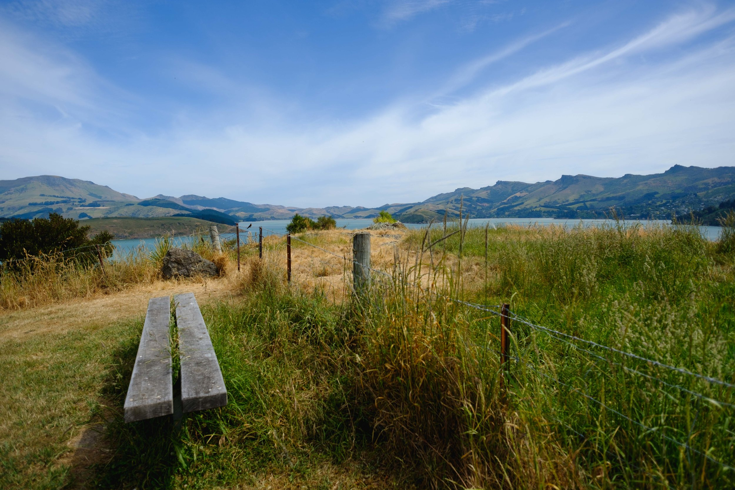 Pony Point New Zealand