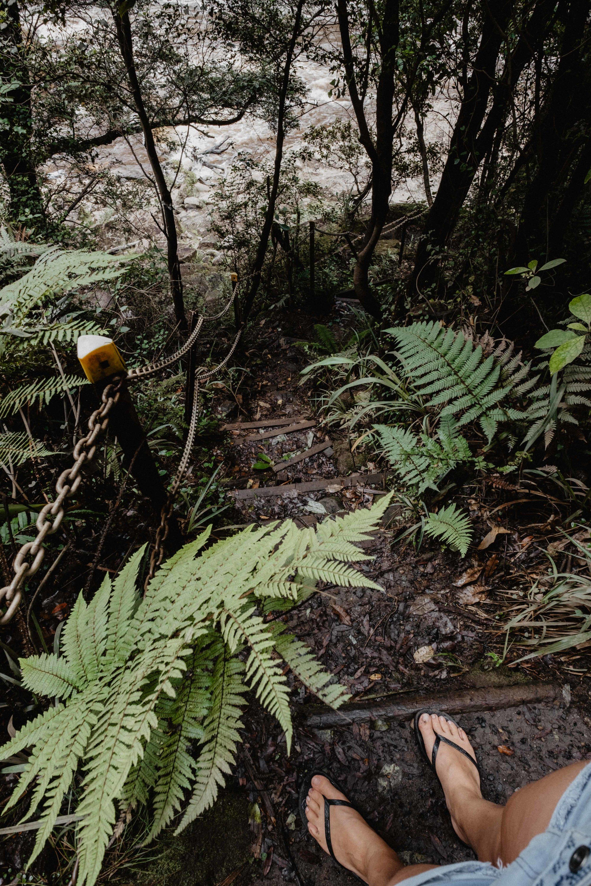 * Petit truc qui n'est pas indiquésur le chemin et que l'on a failli rater : en arrivant devant la grosse chute d'eau -  Mangatani Falls  - il y a un petit chemin sur la droite qui permet de descendre au niveau de la rivière et d'admirer la chute d'en dessous, elle est encore plus impressionnante de ce point de vue là :)  * Autre astuce si c'était à refaire : mettre des chaussures fermées. Il y a parfois des morceaux de fer/rail que l'on ne voit pas dépasser de la terre au milieu des feuilles. Pas très agréable pour les orteils ;) !