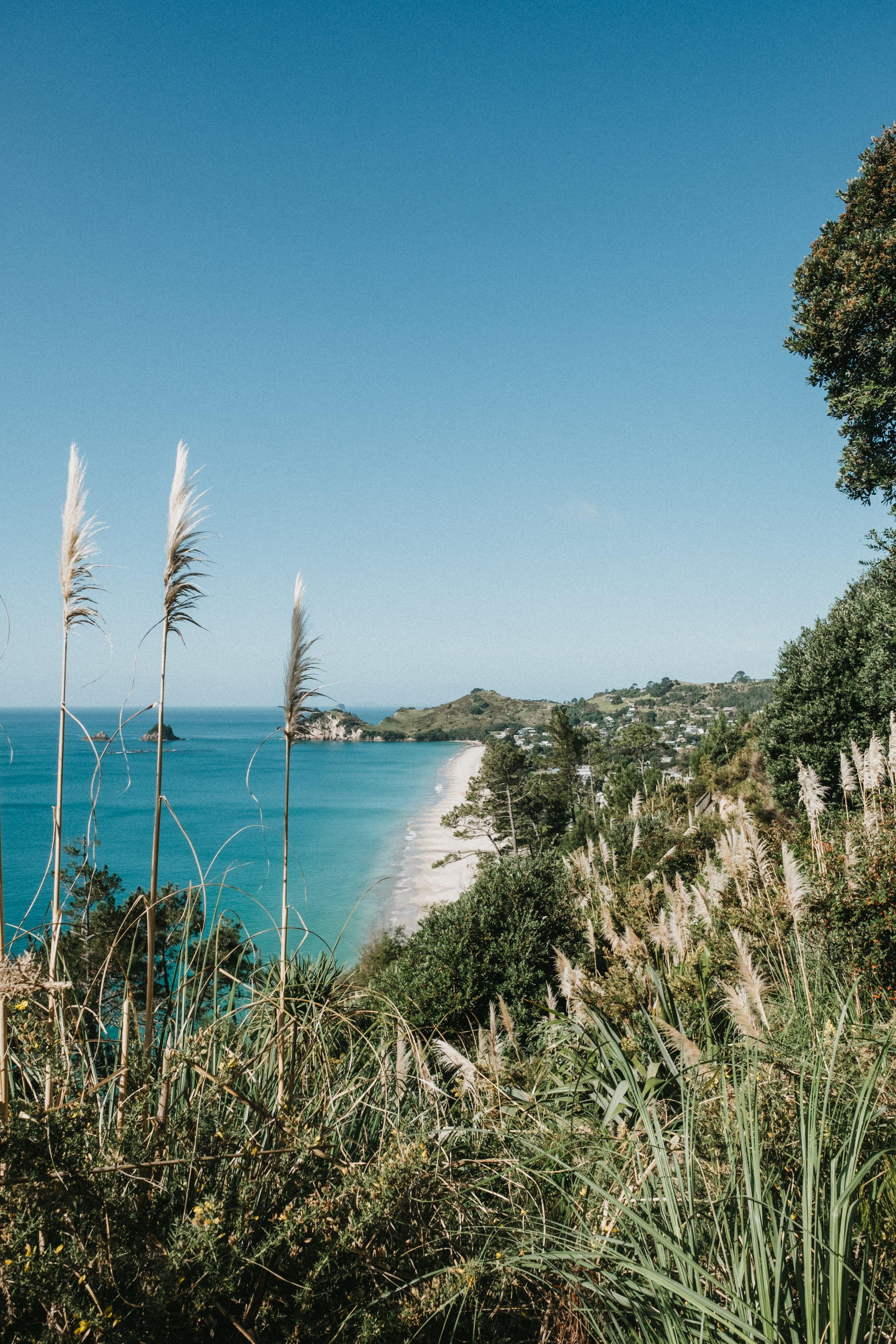 Vue sur Hahei Beach