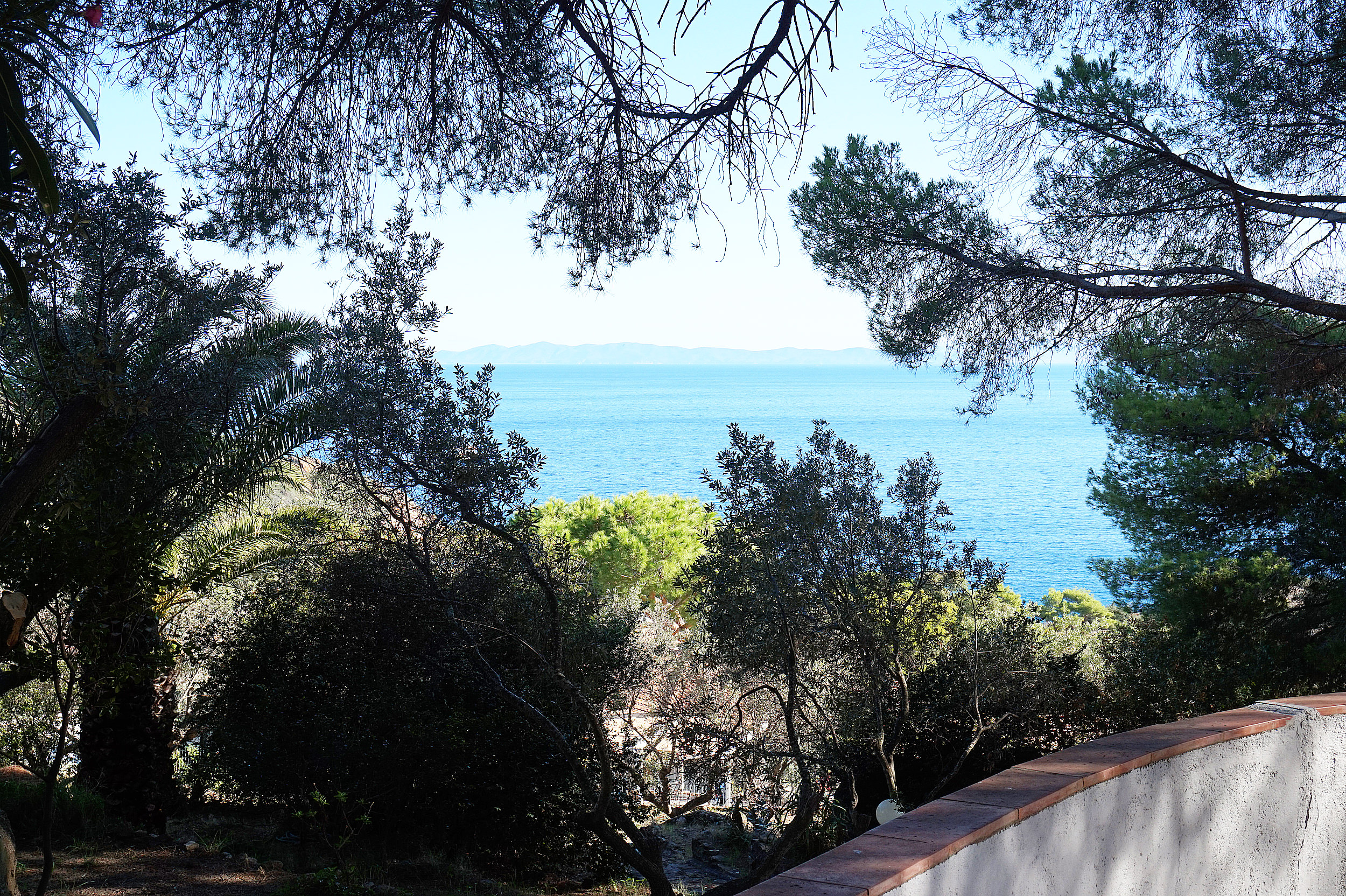 Copy of Giglio Villa garden view