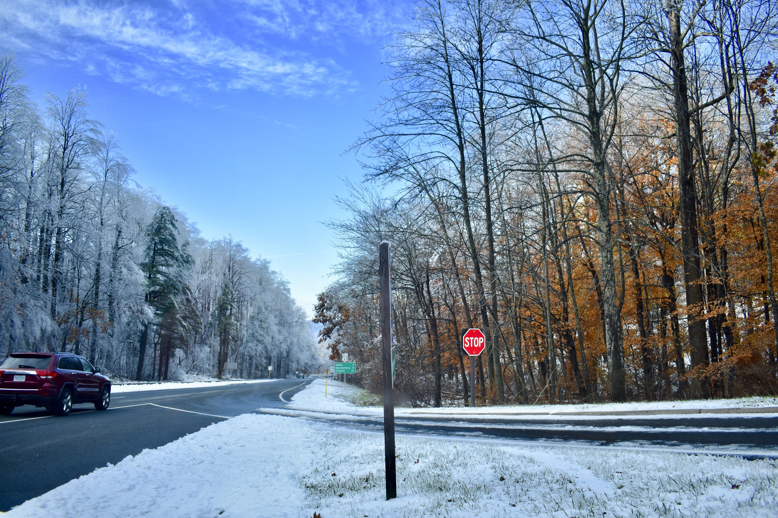 Vestiges of autumn on the right. Full-blown winter on the left. Near Skyline Drive.