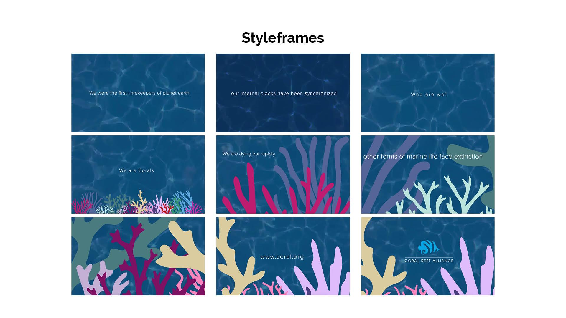 Corals 9.jpg