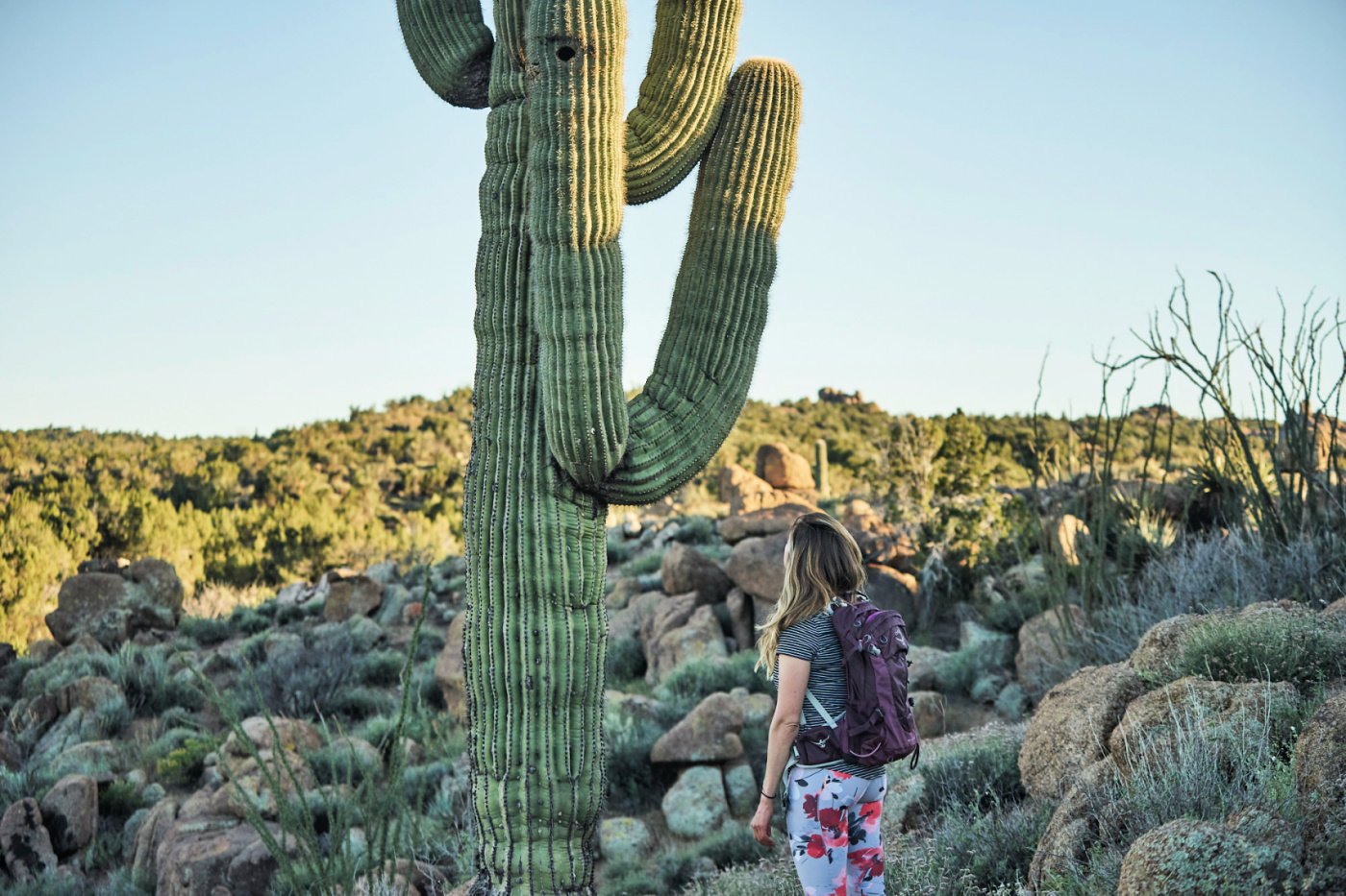 Hiking for Beginners - tips for your first day hike! Amanda Outside. #hiking #hikingtips #cactus