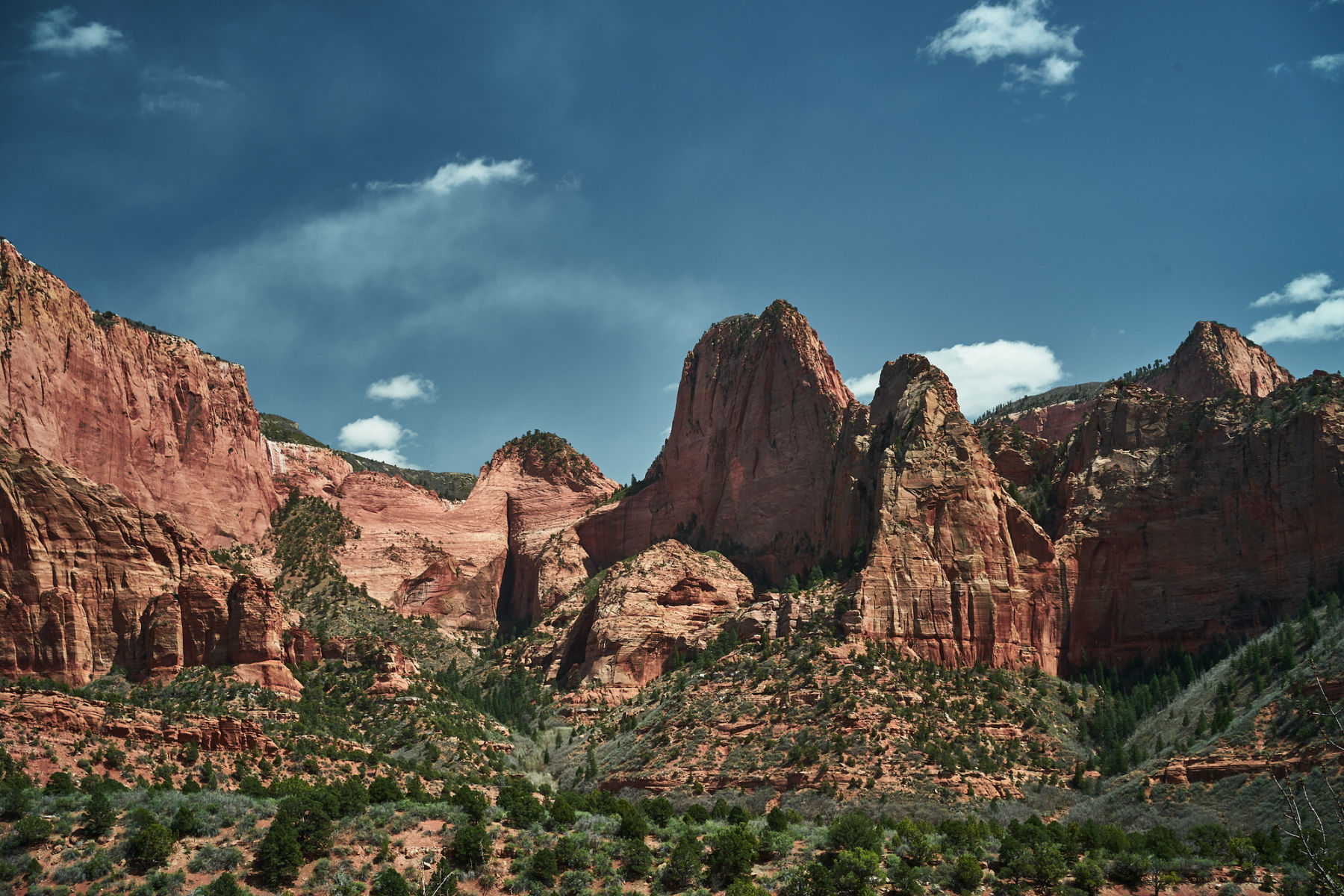 Photo of Kolob Canyons in Zion National Park by Nick Roush Photography. Click through for your complete guide to visiting Kolob Canyons. www.amandaoutside.com #zion #utah #hikingtrails