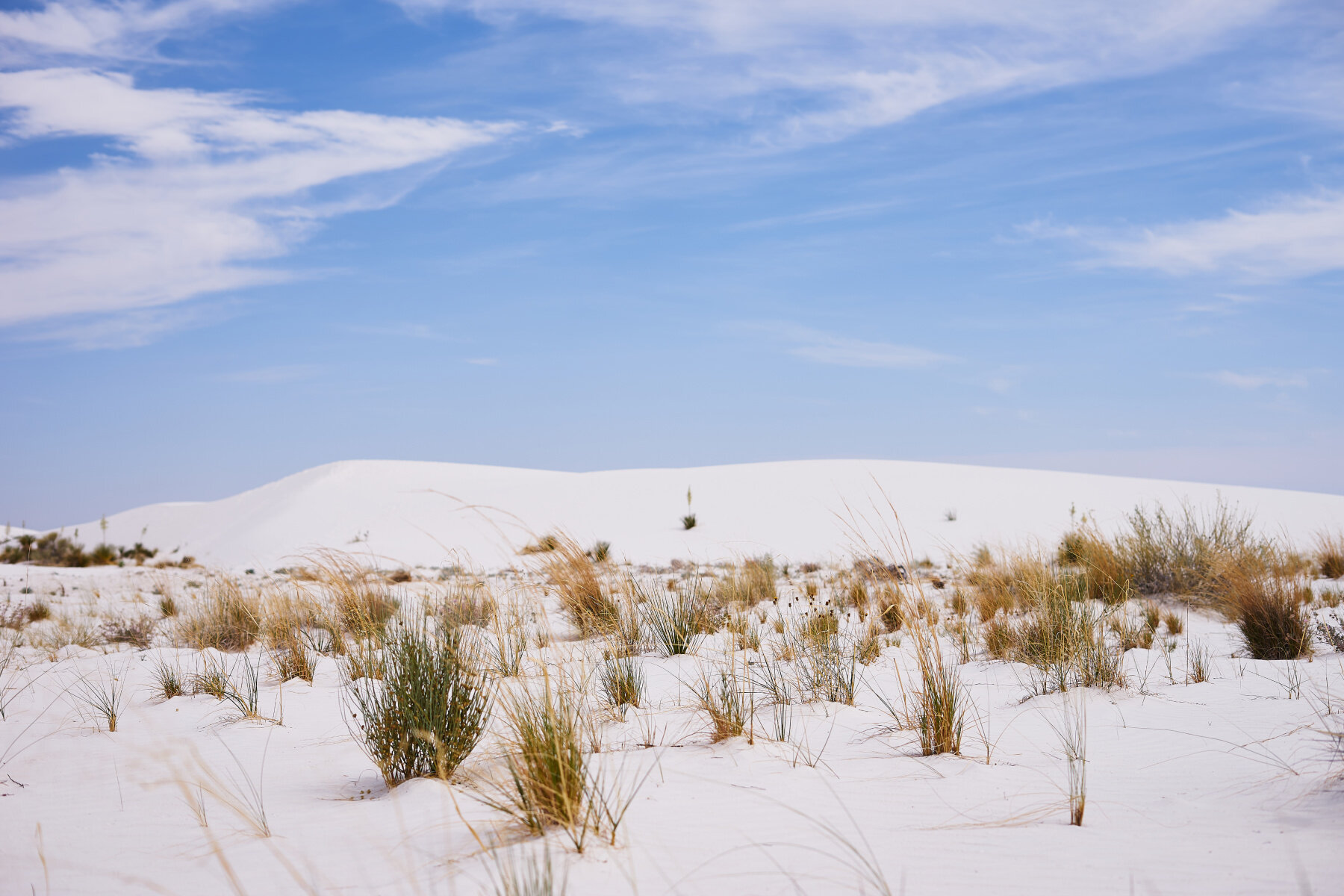 Your guide to White Sand Dunes National Monument by Amanda Outside! Everything you need to know about White Sand Dunes backcountry camping, hiking, and sledding. www.amandaoutside.com