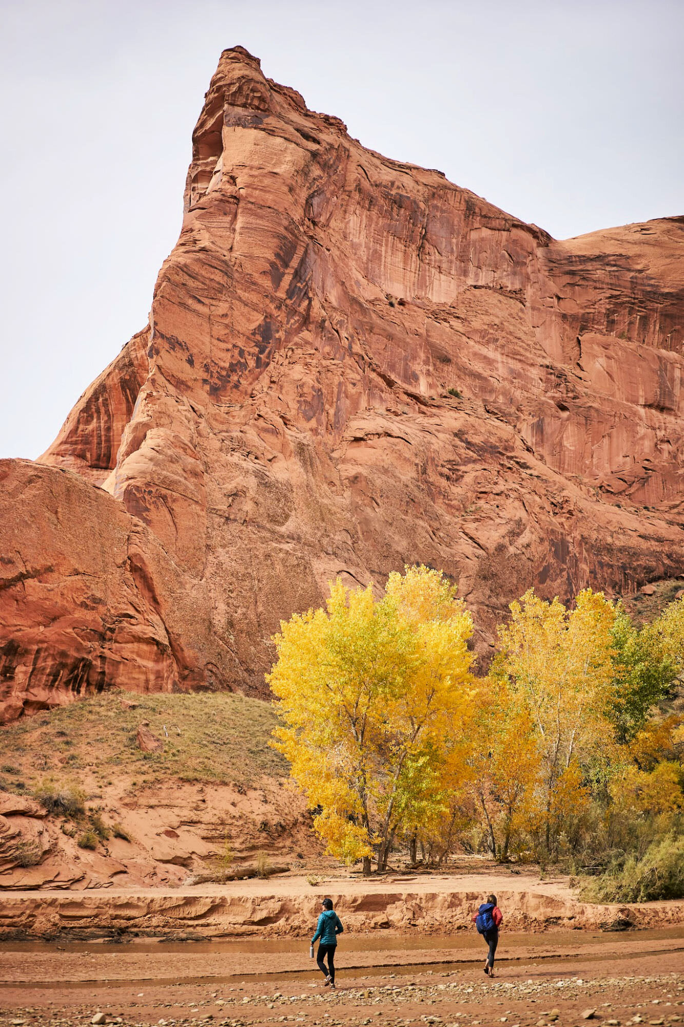 Backpacking in Coyote Gulch is incredible! This complete guide will walk you through everything you need to know when planning a backpacking trip to Coyote Gulch in Utah. www.amandaoutside.com