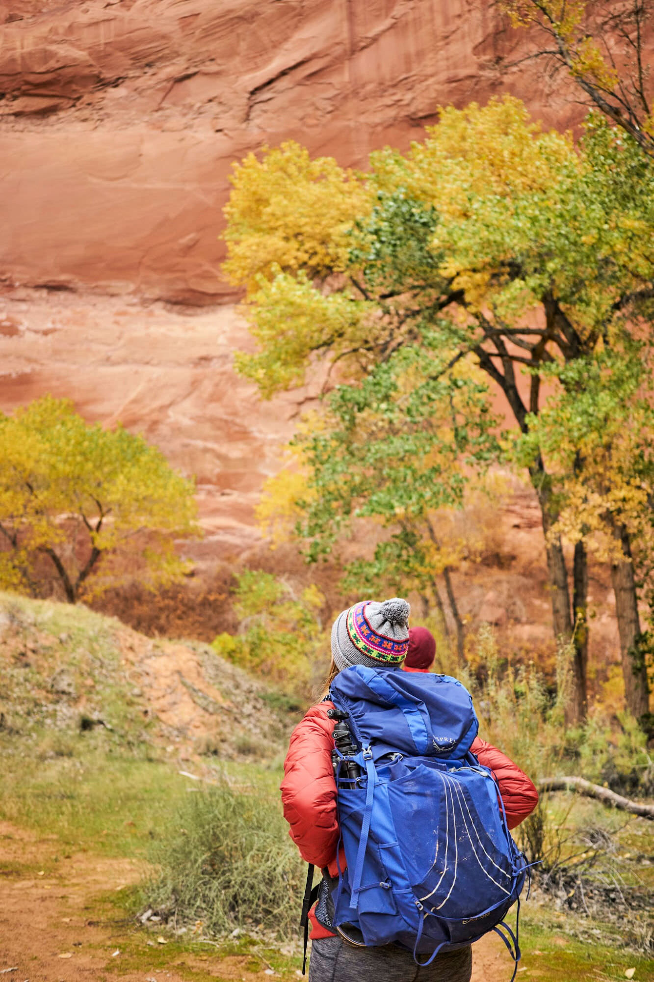 If you want to go backpacking in Coyote Gulch - this is the guide you need! Click through for all the information and tips for backpacking to Coyote Gulch in Utah. By Amanda Outside. www.amandaoutside.com