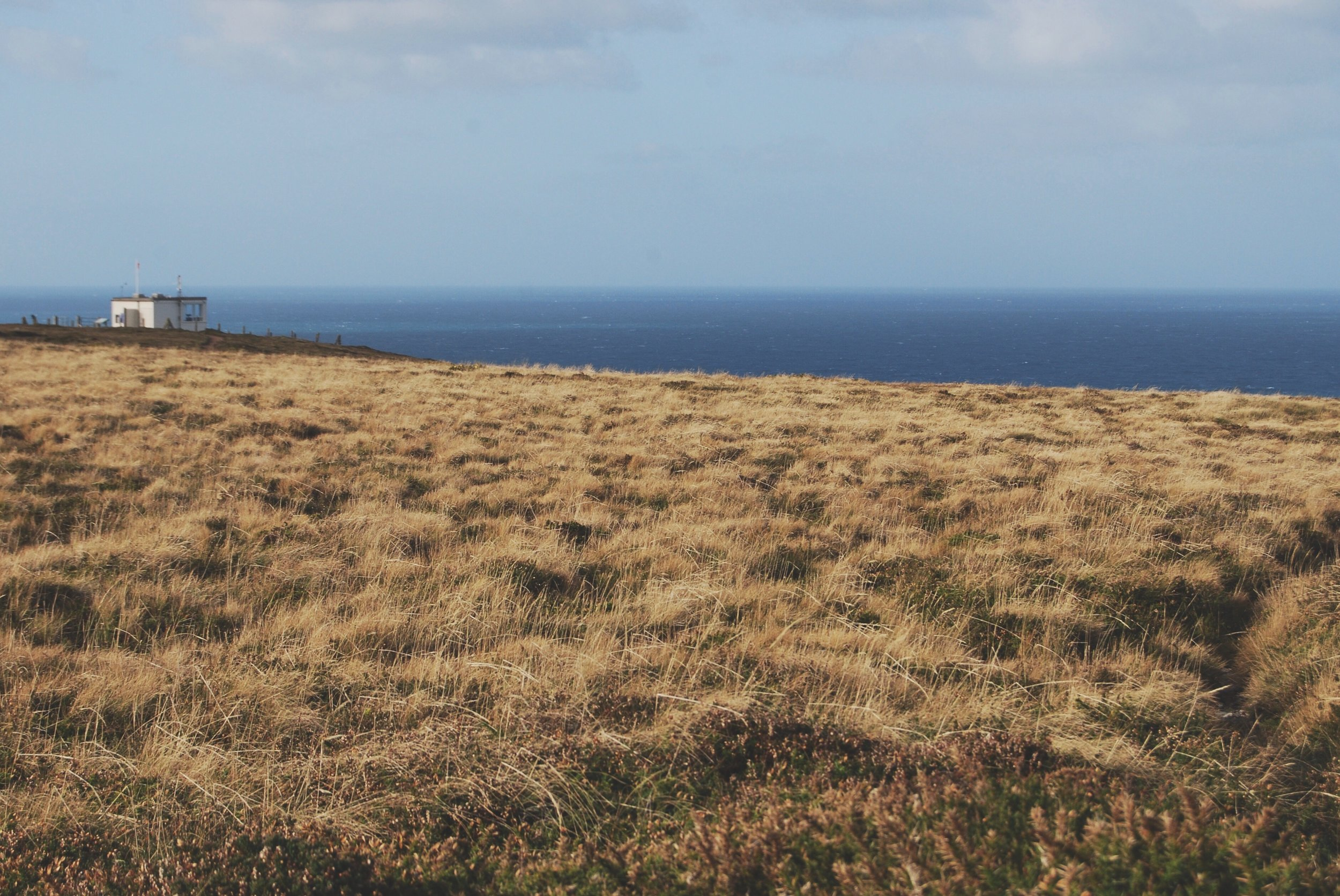 On the other side of the clay pit, the hilltop gives way to the ocean. the view never fails to inspire and energise me.