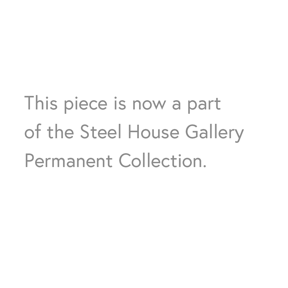 Carswell-portfolio-text-steel-house.png
