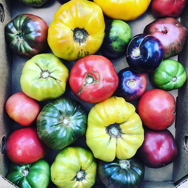 Season is almost over, so if you like organic heirloom tomatoes, you know where to find them 😎 #heirloomtomatoes  #hepworthfarms  #eatlocal  #organic  #frenchbistro  #fortgreene  #brooklyn