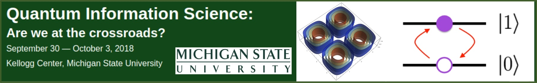 MSU QIS workshop logo v2.jpg