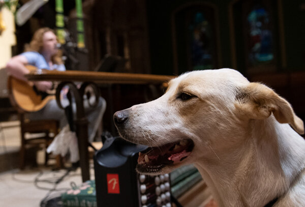 blessing-of-the-animals-57_48861414158_o.jpg
