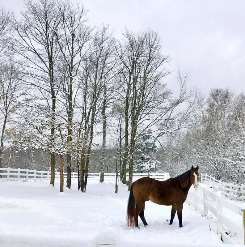Winter Nash.jpg