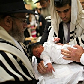 - Why Non-Jews Are Choosing Jewish Circumcision CeremoniesJessica Alpert | June 23, 2015Finch isn't the only non-Jew who has felt a connection to the religious elements of the procedure. Nationwide, circumcisions have decreased over the last few decades—from 64.5 percent of newborn boys in 1979 to 58.3 percent in 2010, according to Centers for Disease Control data—but among those opting to circumcise their sons, some non-Jews are forgoing the hospital or doctor's office and requesting Jewish mohels for reasons both practical and religious. (Reliable statistics on religious circumcisions are hard to come by, but several mohels I talked to said they've noticed an uptick in their popularity in recent years.) Mohels, who typically perform circumcisions in private homes, can be doctors, but some are simply devout Jews—often, but not always, members of the clergy—who undergo technical training in order to learn how to perform the procedure. All mohels, including health professionals, are also trained in the ritual aspects of circumcision.