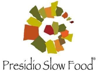 logo-presidio.jpg